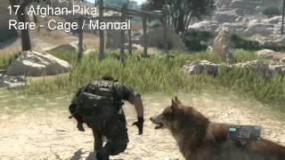 Download Metal Gear Solid 5 - All Animals Guide - Complete Animal Conservation Platform ( Zoo ) Video