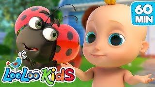 Download Skip to My Lou - The BEST SONGS for Kids | LooLoo Kids Video