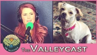 Download How Lee Saved Her Dog From Meth Addicts | The Valleycast, Ep. 23 (Highlights) Video