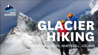 Download Glacier hiking and climbing with Glacier Guides Video
