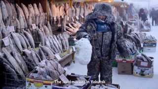 Download Coldest Village on Earth (HD1080p) Video