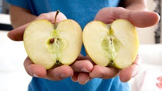 Download This Week I Learned to Split an Apple with my Hands Video