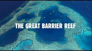 Download Queensland's Great Barrier Reef: The World's Best Address Video