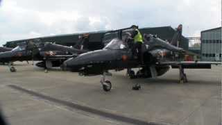 Download Queen's Diamond Jubilee EIIR Flypast - a pilots view from a Hawk T2 Video