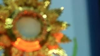 Download Oración para quitar el miedo (Hora Santa 6 Junio 2013) Video