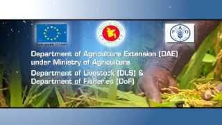 Download Food and Agriculture Organization (FAO)- Documentary Video