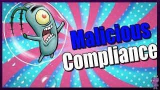 Download Malicious Compliance | Dog SHREDS Social Security Checks!! Video