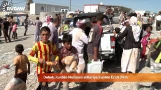 Download DIHOK - Kurdên êzidî nehat ji bîr kirin Video