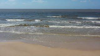 Download Limpieza de playas Video