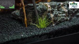 Download So machen Sie Ihr Aquarium startklar - Dehner Aqua Start 80 Video