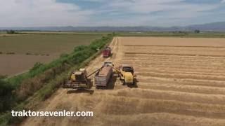 Download Buğday hasadı Aydın ovası 2 Video