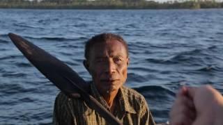 Download Shark hunters in Papua New Guinea Video