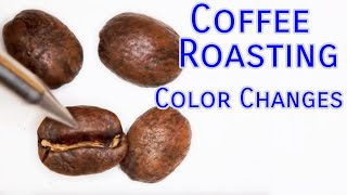 Download Coffee Roasting Basics - Color Changes Video