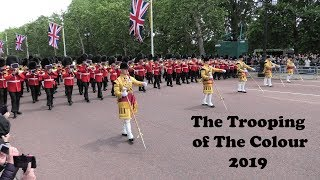 Download Trooping The Colour 2019 - London - Drum Majors [4K/UHD] Video