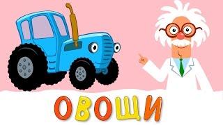 Download ОВОЩИ - Развивающая песенка мультик про полезную еду и синий трактор для детей малышей Video