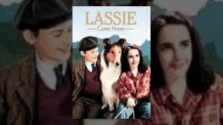 Download Lassie Come Home Video