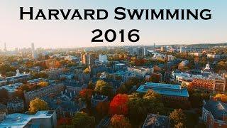 Download Harvard Swimming 2016 Video