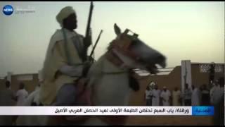 Download ورقلة: ياب السبع تحتضن الطبعة الأولى لعيد الحصان العربي الأصيل Video