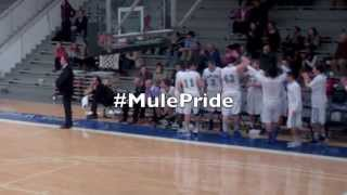 Download Colby College Men's Basketball - Bench Celebrations Video