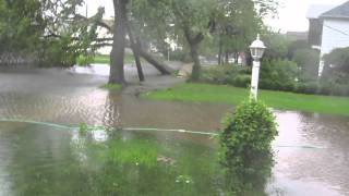 Download Hurricane Irene takes down trees and power lines (trees fall at 1:24) Video