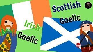 Download How to Tell Apart Scottish-Gaelic and Irish Gaelic Video