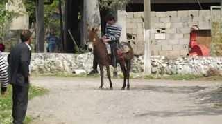 Download Yörük Şöleni- Eşek Yarışı Video