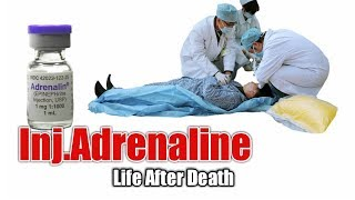 Download Injection Adrenaline / Emergency Drugs / Action / side effects Video