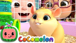 Download Class Pet Song | CoCoMelon Nursery Rhymes & Kids Songs Video