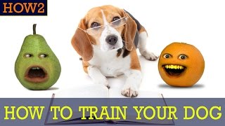 Download HOW2: How to Train Your Dog! Video
