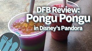 Download Pongu Pongu in Disney World's Pandora - The World of Avatar Restaurant Review Video