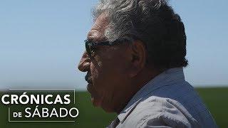 Download Con el sudor de su frente, un mexicano logra crear un imperio Video
