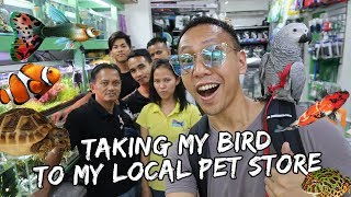 Download Taking My Bird to My Local Pet Store | Vlog #407 Video
