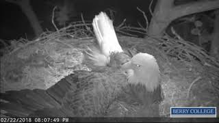 Download Berry College Eagles - Mom's Fall Alert - 02/22/2018 Video