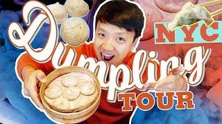 Download BEST DUMPLINGS in New York! Dumpling Tour of New York City Video