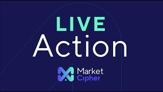 Download Whale Crew Long 10400 Market Cipher LIVE ACTION Video