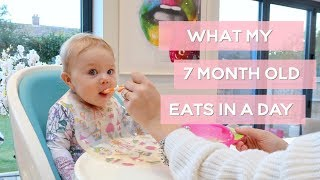Download WHAT MY 7MONTH OLD EATS IN A DAY Video