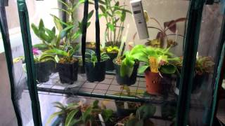 Download How to make a Cheap DIY Indoor Grow Chamber for Warm Growing Orchids and Lowland Carnivorous Plants Video