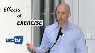 Download Inside the Effects of Exercise: From Cellular to Psychological Benefits Video