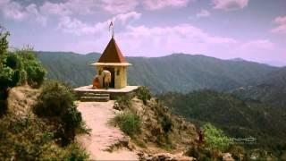Download India Kingdom of Tigers HD Video