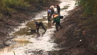 Download Dokumentāls Raidījums Zvejniecība Video