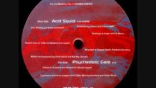 Download Asys - Acid Squid (CLASSIC 1996) Video