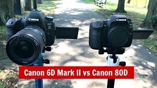 Download Canon 6D Mark II vs Canon 80D: Which To Buy? Dynamic Range, AF Test & More! Video