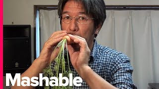 Download Meet the Man Who Makes Music with Vegetables Video