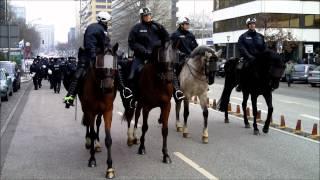 Download Polizeipferde im Einsatz Video