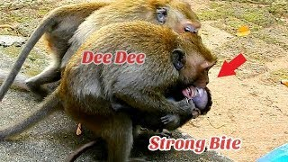Download Gangster Dee Dee torturing baby Daniela nearly Die/ Pity baby Daniela Video