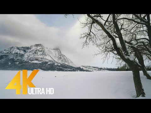 4K Wintertime Virtual Hike through Snowy Forest with Snow Crunch Sounds - Scenic Trails of Canada