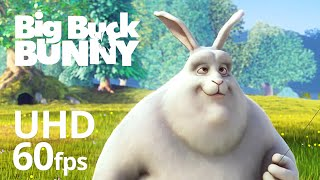 Download Big Buck Bunny 60fps 4K - Official Blender Foundation Short Film Video