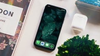 Download iPhone X Two Months Later: New Problems Video