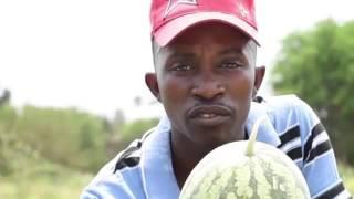 Download NAINGIZA ZAIDI YA MILIONI 24 KILA BAADA YA MIEZI MITATU YA KUVUNA Video