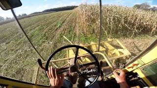 Download Chopping Corn with New Holland 1890 Video